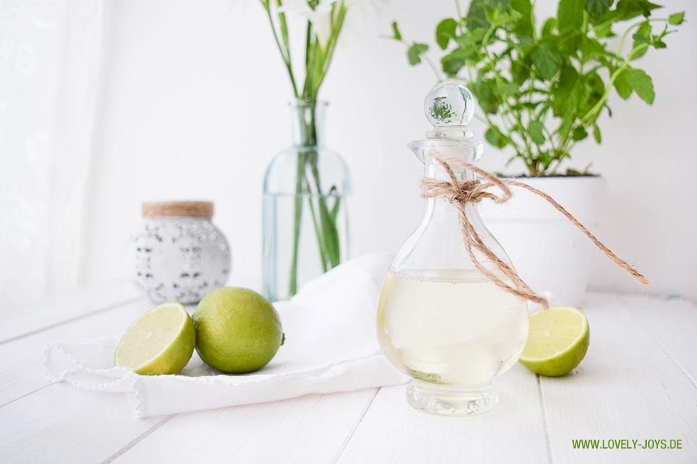 Holunder Limonade Rezept Minze Ingwer Limette Alkoholfreier Hugo