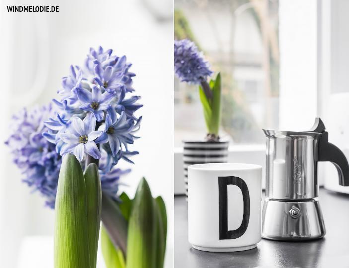 Hyazinthen lila design letters tasse bialetti kaffee kanne