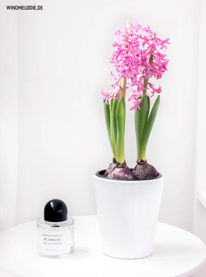 rosa hyazinthen weiß schlafzimmer