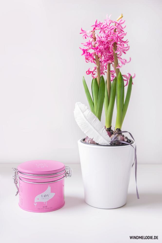 Tee Lov Organic Rose Rosa Dose Hyazinthen