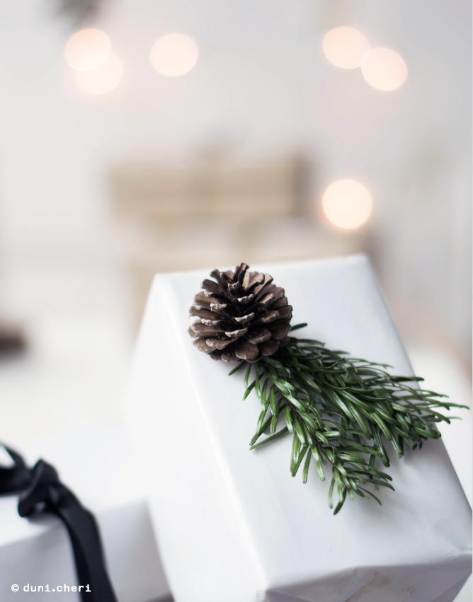 Geschenkverpackung Ideen Natur Tannenzweige Zapfen