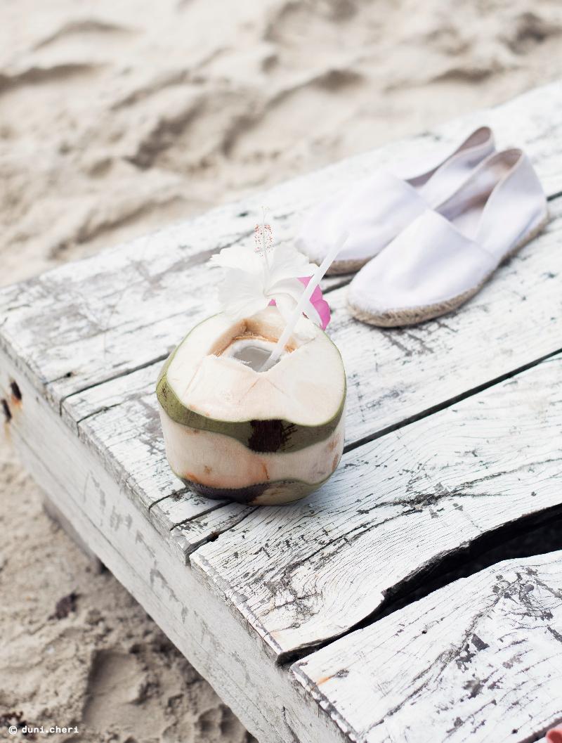 frische kokosnuss blume strand thailand