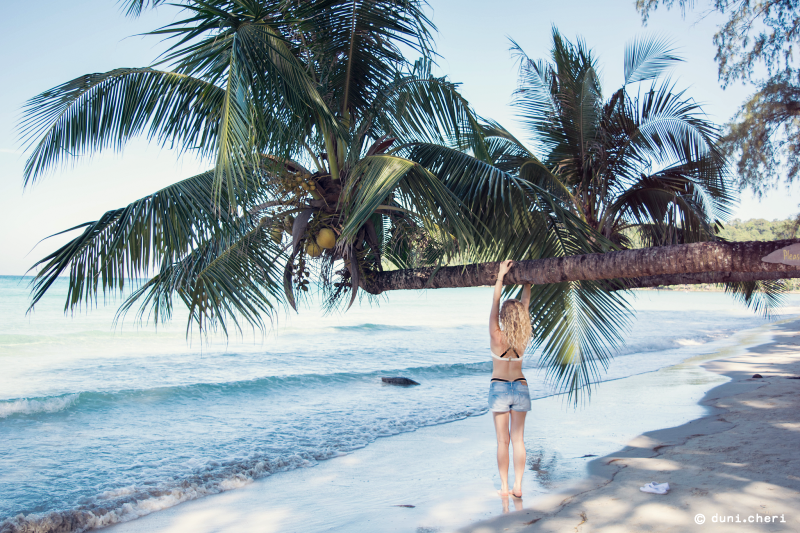 palmen strand thailand koh kood