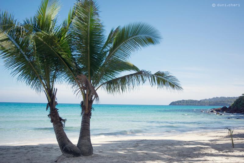 thailand strand insel schaukel