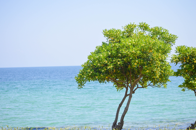 Griechenland Strand Meer