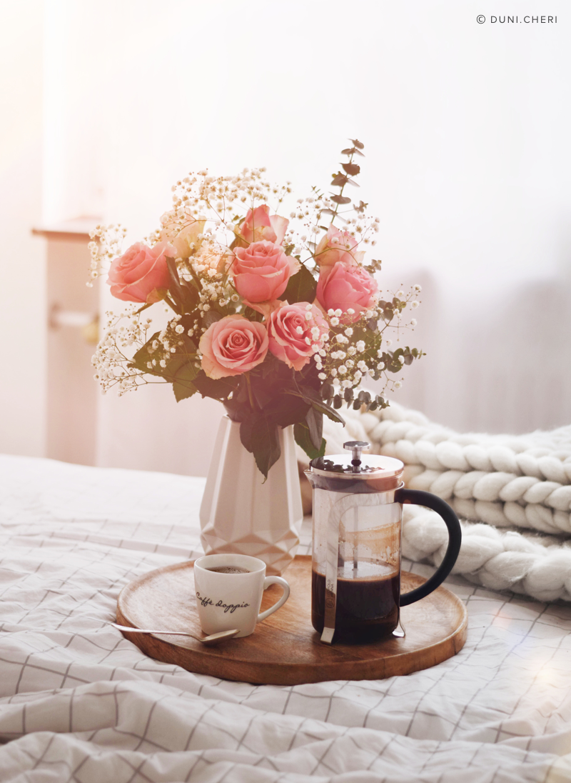 kaffee french press sonne rosen