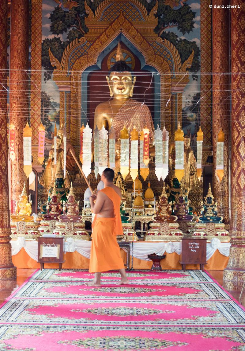 mönch thailand tempel chiang mai buddha gold