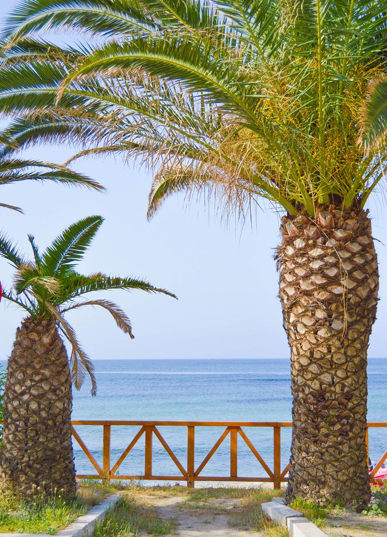 Griechenland Restaurant am Meer