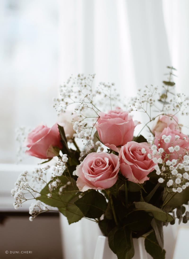 rosen vase fenster