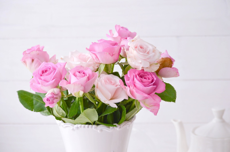 Schöne Rosa Rosen Vintage