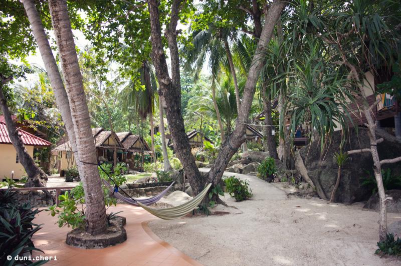 smile bungalows bottle beach thailand reise
