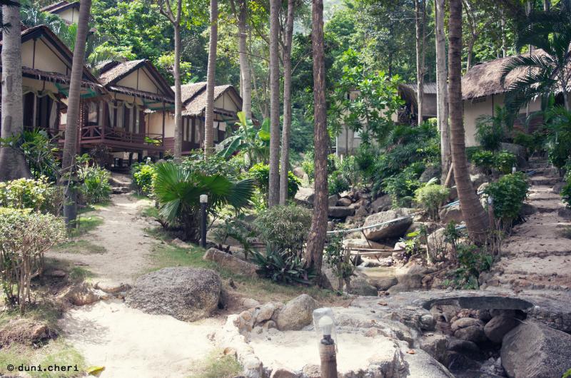 thailand koh pha ngan insel reise