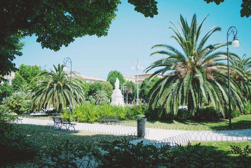 ancona park palmen