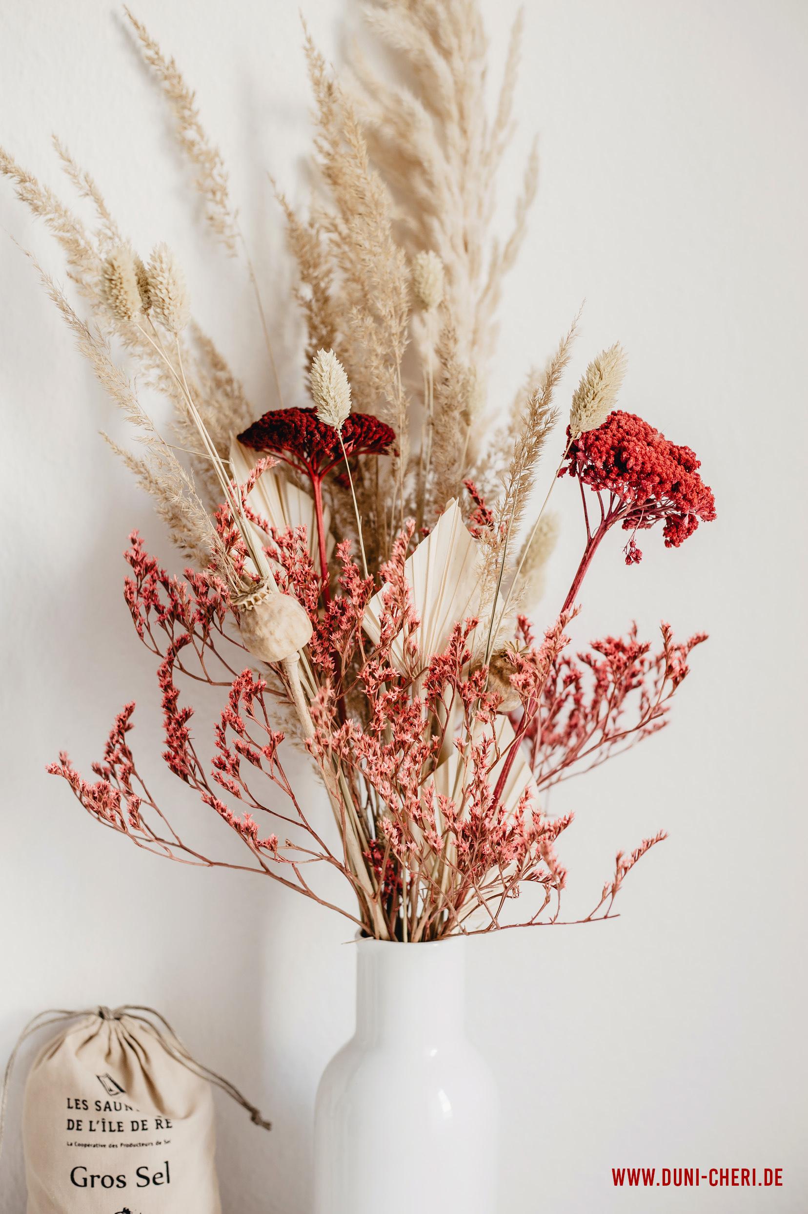 getrocknete blumen gesteck vase rot natur