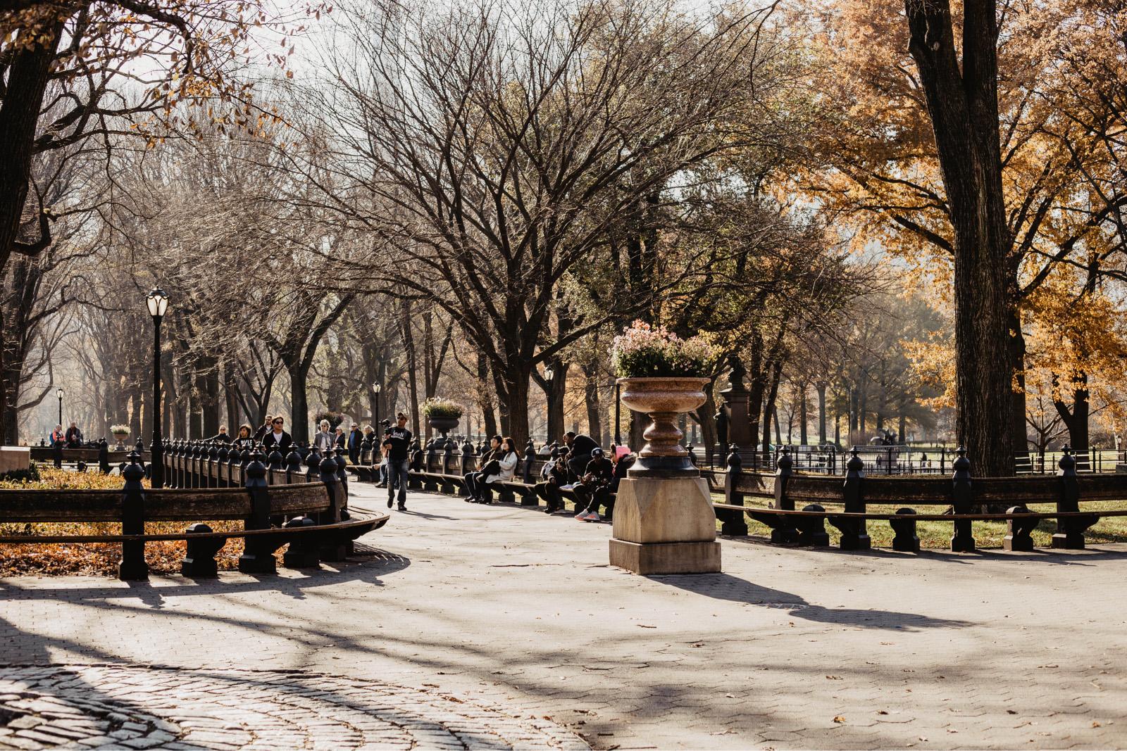 central park herbst manhattan tipps