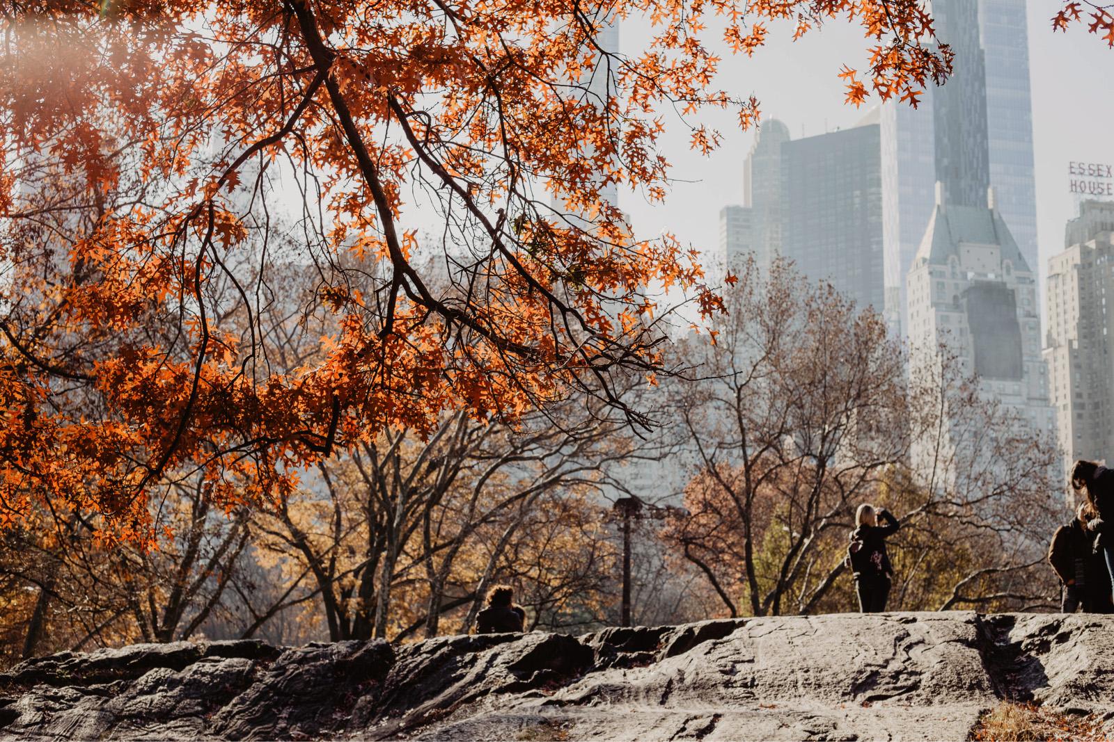 herbst new york tipps upper east side