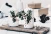 DIY Ideen Weihnachten & Chilli-Honig-Nüsse